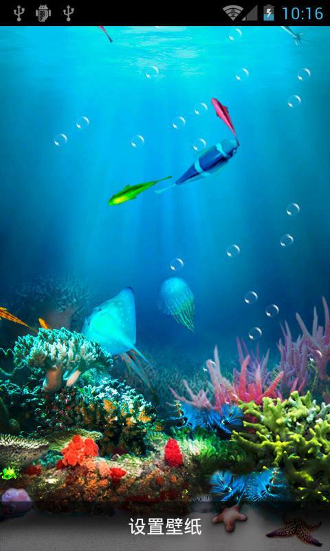 design 风景桌面壁纸海洋世界图片大全_风景桌面壁纸海洋  海洋动物被